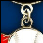 Lapel Pin Dangler Example