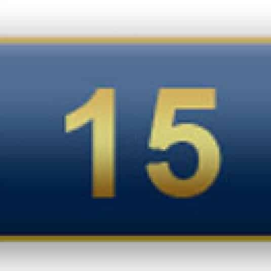 15 Years Of Service Blue Citation Bar
