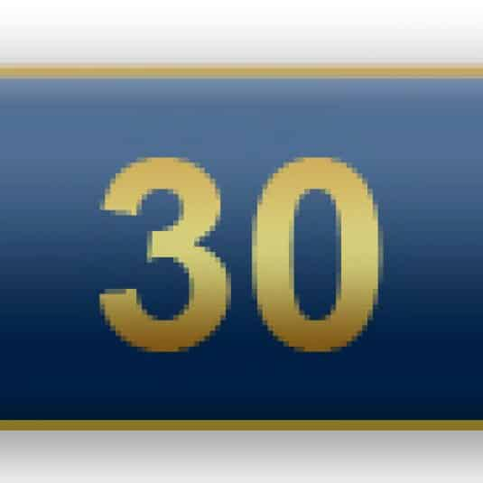30 Years Of Service Blue Citation Bar
