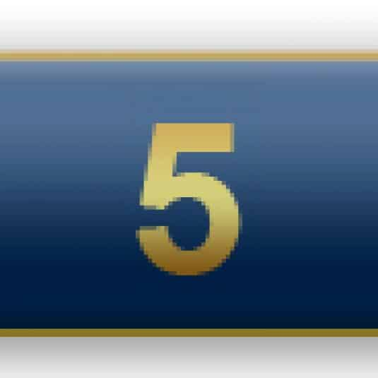 5 Years Of Service Blue Citation Bar
