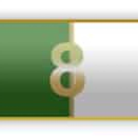 8 Years Of Service Green And White Citation Bar