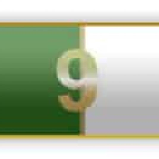 Green And White 9 Years Of Service Citation Bar