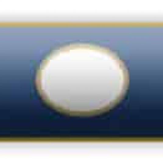 Blue With Cutout Citation Bar