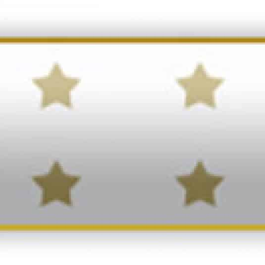 White Medal Of Honor Award Bar