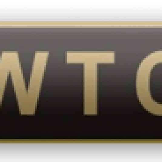 World Trade Center Mini Citation Bar Lapel Pin